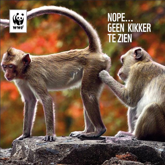 Wereld Natuurfonds